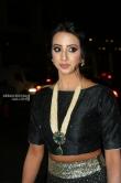 Sanjana at at Filmfare Awards South 2018 (13)