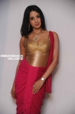 Sanjana in Rajashima Kannada Movie Press Meet stills (30)