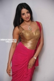 Sanjana in Rajashima Kannada Movie Press Meet stills (31)