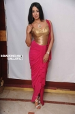 Sanjana in Rajashima Kannada Movie Press Meet stills (32)