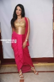 Sanjana in Rajashima Kannada Movie Press Meet stills (38)