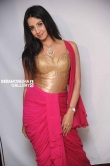 Sanjana in Rajashima Kannada Movie Press Meet stills (39)