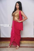 Sanjana in Rajashima Kannada Movie Press Meet stills (40)