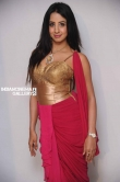 Sanjana in Rajashima Kannada Movie Press Meet stills (41)
