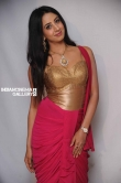 Sanjana in Rajashima Kannada Movie Press Meet stills (43)