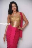 Sanjana in Rajashima Kannada Movie Press Meet stills (45)