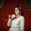 Shamna Kasim Instagram Photos(22)