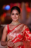 Shanvi Stivastava at SIIMA awards 2018 redcarpet (7)