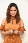 shilpa chakravarthy at peta movie audio launch (13)