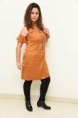 shilpa chakravarthy at peta movie audio launch (3)