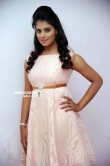 Shobitha at Attempt to Murder movie audio launch (4)