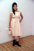 Shobitha at Attempt to Murder movie audio launch (7)