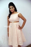 Shobitha at Attempt to Murder movie audio launch (8)