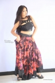 shreya-vyas-new-photo-shoot-185482
