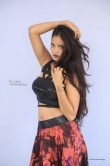 shreya-vyas-new-photo-shoot-224487