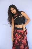 shreya-vyas-new-photo-shoot-234050