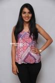 Sindhu Loknath at Heegondu dina press meet (11)