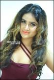 Sony Charishta Bday Celebrations stills (25)
