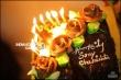 Sony Charishta Bday Celebrations stills (29)