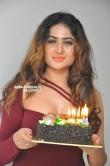 Sony Charishta Bday Celebrations stills (62)