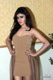 sony-charishta-at-terror-movie-press-meet-122441