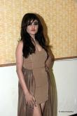 sony-charishta-at-terror-movie-press-meet-2391