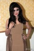 sony-charishta-at-terror-movie-press-meet-6650