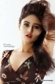 sony-charishta-new-photo-shoot-january-2016-72364