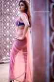 sony-charishta-in-pink-saree-photo-shoot-101406