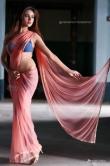sony-charishta-in-pink-saree-photo-shoot-132538