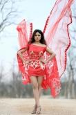 sony charishta photo shoot stills may 2019 (3)