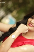 sreemukhi-december-2015-stills-222220