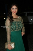 Surabhi at Filmfare Awards South 2018 (6)
