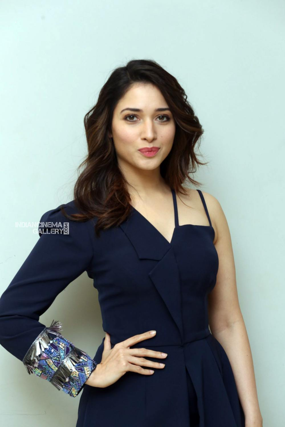 Tamanna Bhatia at f2 movie trailer launch (4)