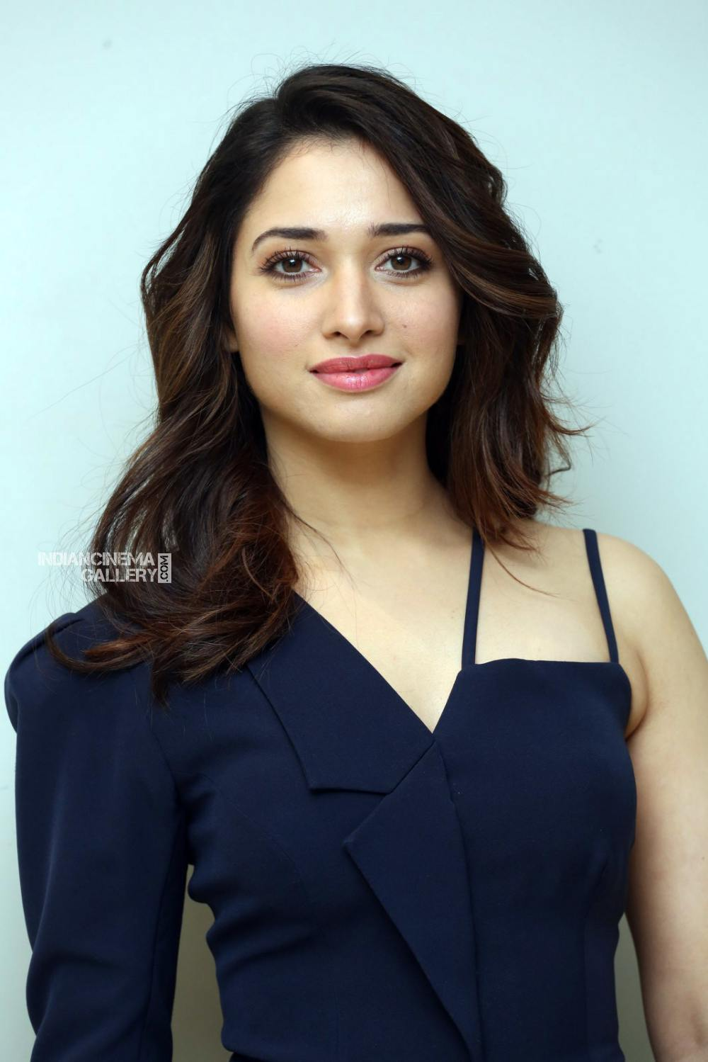Tamanna Bhatia at f2 movie trailer launch (6)