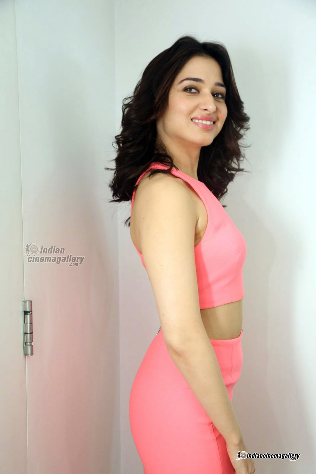 tamanna-bhatia-in-pink-dress-march-2016-pics-115058