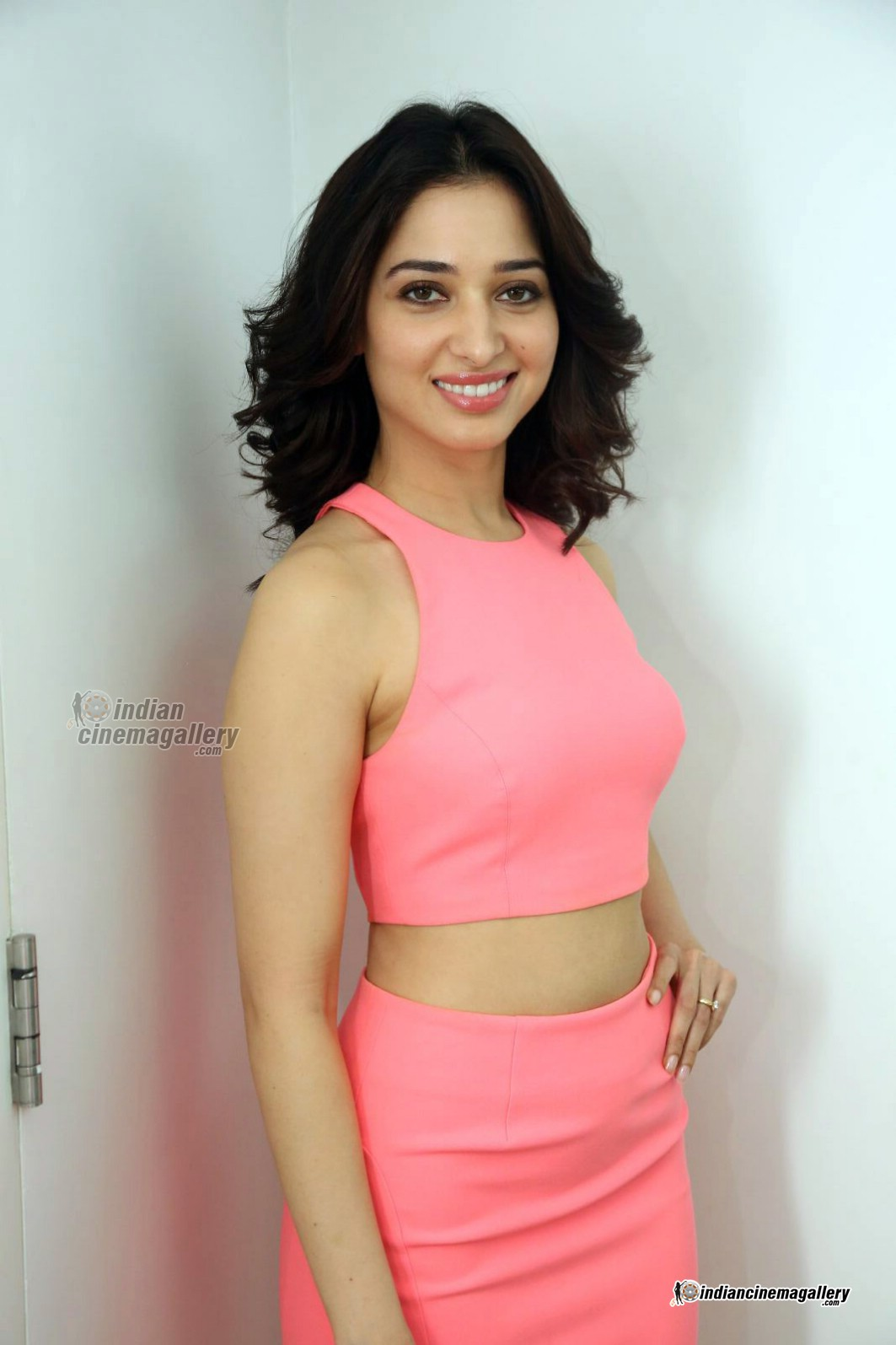 tamanna-bhatia-in-pink-dress-march-2016-pics-139102
