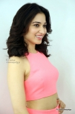tamanna-bhatia-in-pink-dress-march-2016-pics-109863