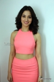 tamanna-bhatia-in-pink-dress-march-2016-pics-12376
