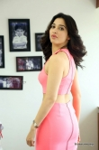 tamanna-bhatia-in-pink-dress-march-2016-pics-172429