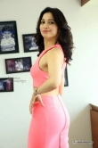 tamanna-bhatia-in-pink-dress-march-2016-pics-192329