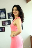 tamanna-bhatia-in-pink-dress-march-2016-pics-209903