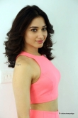 tamanna-bhatia-in-pink-dress-march-2016-pics-41162