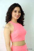 tamanna-bhatia-in-pink-dress-march-2016-pics-53635