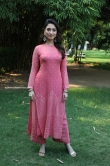 Tamanna at Petromax Movie Press Meet Stills (2)