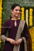 tamannah at gopichanda new movie opening (9)