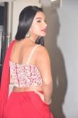 Tanya Hope at Disco Raja Movie Audio Launch (22)