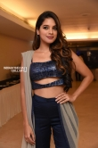 Tanya Hope at Udgharsha Trailer Launch (4)