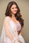 Vedhika at Ruler Movie Success Meet (12)
