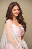 Vedhika at Ruler Movie Success Meet (13)